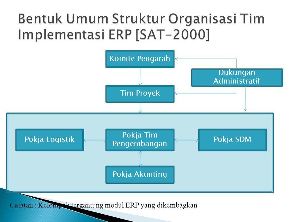 Bentuk Umum Struktur Organisasi Tim Implementasi ERP [SAT-2000]